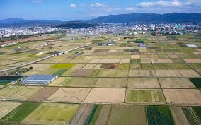 農業に活用すると決められた土地